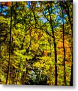 Backroads Of The Great Smoky Mountains National Park Metal Print