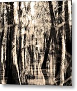 Backwater Cajun Country Metal Print