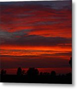 Backyard Beautiful Metal Print