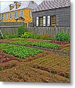 Backyard Garden In Louisbourg Living History Museum-1744-ns Metal Print