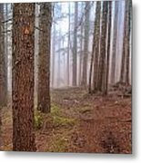 Baden Powell Trail Marker Metal Print