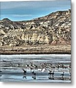 Badlands Spring Thaw Metal Print