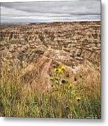 Badlands Wild Sunflowers Metal Print