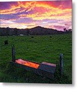 Bahrs Scrub Sunset Metal Print