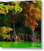 Bald Cypress 3 - Digital Effect Metal Print