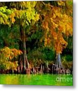 Bald Cypress 4 - Digital Effect Metal Print