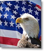 Bald Eagle And American Flag Metal Print