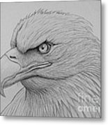 Bald Eagle Drawing Metal Print