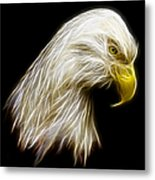 Bald Eagle Fractal Metal Print