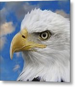 Bald Eagle In The Clouds Metal Print