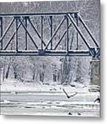 Bald Eagle With Fish By Railroad Bridge 6639 Metal Print