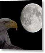 Bald Eagle With Full Moon - 2 Metal Print