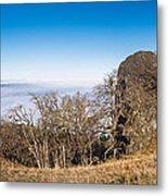 Bald Hills Vista Panorama Metal Print