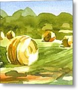 Bales In The Morning Sun Metal Print by Kip DeVore