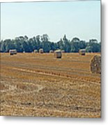 Bales Of Hay Metal Print