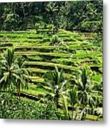 Balinese Dream Metal Print
