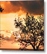 Baltic Sunset In The South Of Sweden Metal Print