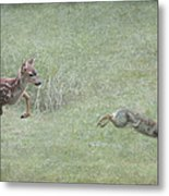 Bambi And Thumper Metal Print