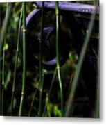 Bamboo And A Bench Metal Print by Tara Miller