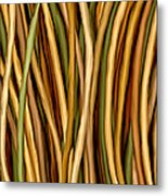 Bamboo Canes Metal Print