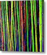 Bamboo Dream Metal Print