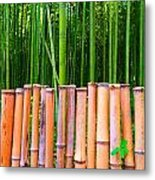 Bamboo Fence Metal Print by Julia Ivanovna Willhite