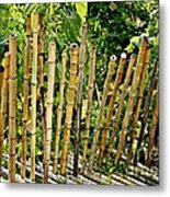 Bamboo Fencing Metal Print by Lilliana Mendez
