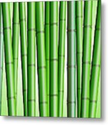 Bamboo Forest Background 2 Metal Print