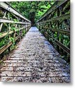 Bamboo Forest Bridge Metal Print