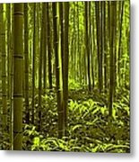 Bamboo Forest Twilight  Metal Print