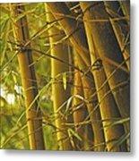 Bamboo Gold Metal Print