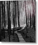 Bamboo Grove At Dusk Metal Print