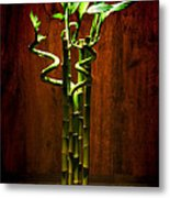 Bambooesque  Metal Print