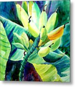Bananas 6-12-06 Julianne Felton Metal Print