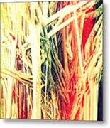 Banyan Tree Metal Print by Chris Andruskiewicz