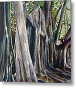 Banyan Trees Metal Print