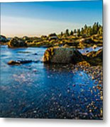 Bar Harbor Coast Metal Print