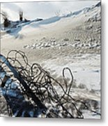 Barb Beach Metal Print