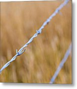 Barb Wire Country Fence Metal Print