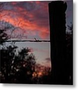 Barbed Wire Sunset Metal Print