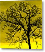 Bare Tree Against Yellow Background E88 Metal Print