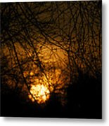 Bare Tree Branches With Winter Sunrise Metal Print