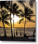 Barefoot In The Park Metal Print