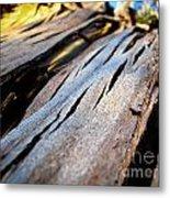 Bark Texture Metal Print