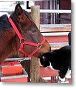 Barn Buddies Metal Print