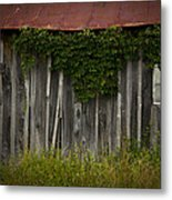 Barn Eyes Metal Print