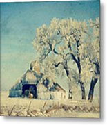 Winter Time Blues Metal Print