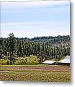 Barn In The Trees Metal Print