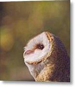 Barn Owl Photo Millie Metal Print