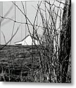 Barn Through Fence Metal Print